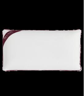 Memory Foam Pillow Anti-dustmite